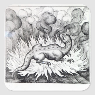 As the Salamander lives in fire Square Sticker