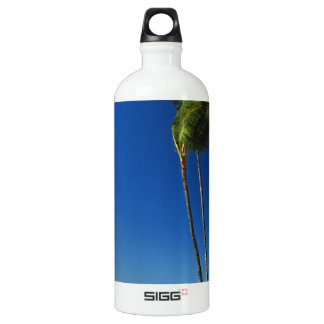 As the Strong Wind Blows Aluminum Water Bottle