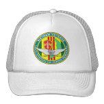ASA 146th Avn (RR) Pilot Hat