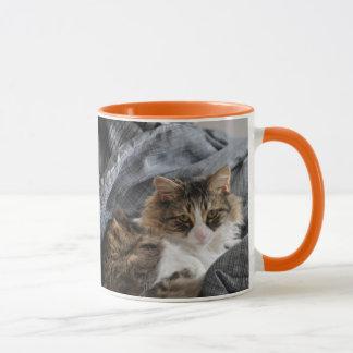 Asalte el gato/el naranja largos grises del pelo taza