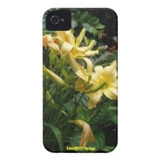 Asantes Lillies iPhone 4 Funda