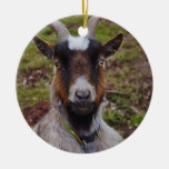 Ascendente cercano de la cabra adorno navideño redondo de cerámica
