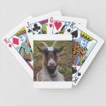 Ascendente cercano de la cabra baraja cartas de poker