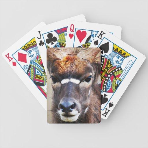 Ascendente cercano del antílope cartas de juego