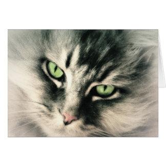 Ascendente cercano del gato tarjeta de felicitación