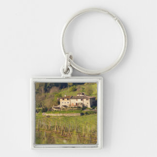 Aschuito, a working farm that accepts guests, keychain