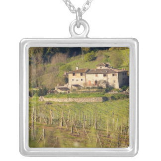 Aschuito, a working farm that accepts guests, silver plated necklace