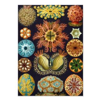 Ascidiae by Ernst Haeckel, Marine Invitations