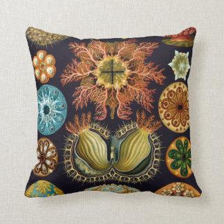 Ascidiae by Ernst Haeckel, Vintage Marine Animals Throw Pillow