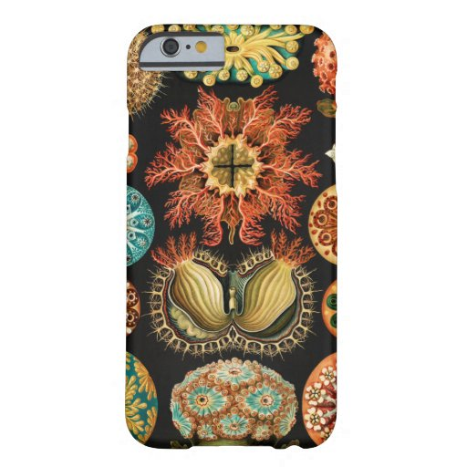 Ascidiae, Seescheiden Marine Life by Ernst Haeckel Barely There iPhone 6 Case