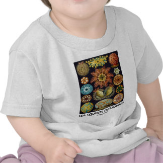 Ascidias (Ascidians - Artforms de la naturaleza) Camiseta