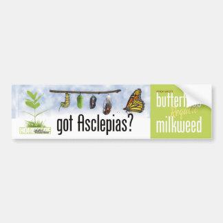 ¿Asclepias conseguido (Milkweed)? Pegatina De Parachoque