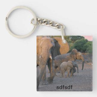asdf Single-Sided square acrylic keychain