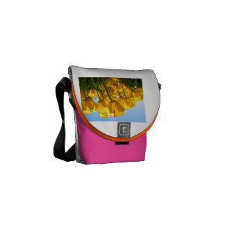 asdfasd courier bag