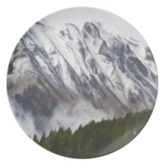 ase ski Plate