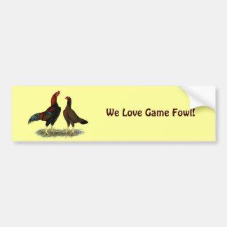Aseel Black Red Chickens Bumper Sticker