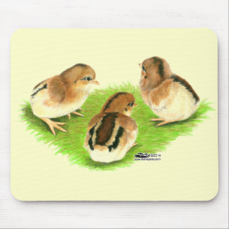 Aseel Black Red Chicks Mouse Pad