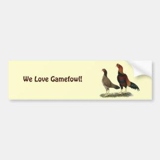 Aseel Wheaten Chickens Car Bumper Sticker