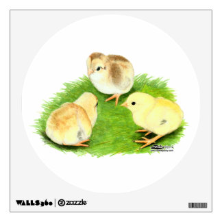 Aseel Wheaten Chicks Wall Sticker