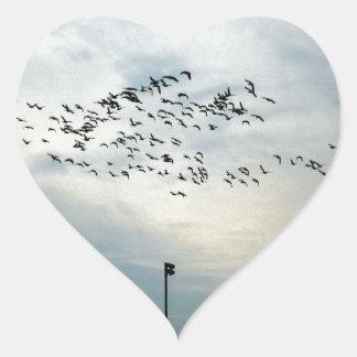 Asesinato de cuervos pegatina en forma de corazón