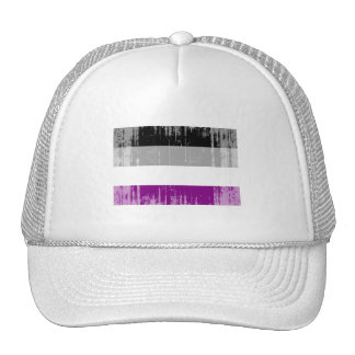 ASEXUAL FLAG DISTRESSED TRUCKER HAT