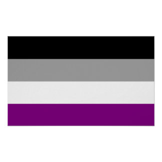 Asexual Pride Flag Poster