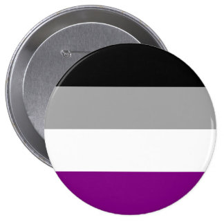 ASEXUAL PRIDE STRIPES DESIGN PIN