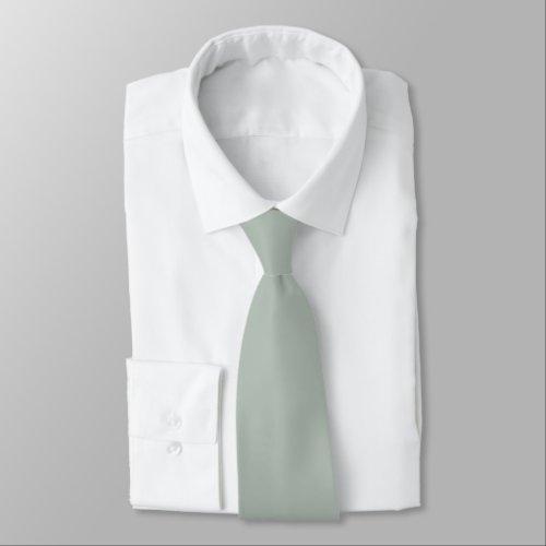 Ash Gray Tie