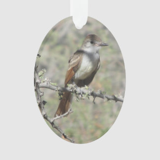Ash-throated Flycatcher Ornament