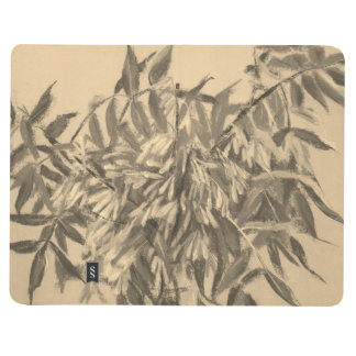 Ash-tree, monochrome sketch, summer foliage floral journal