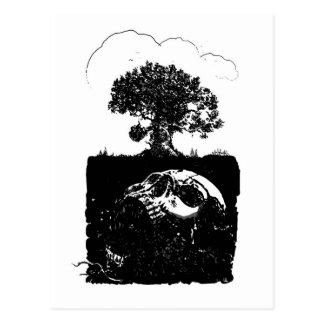 Ash Tree Post Card