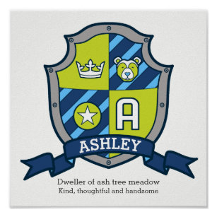 Is ashley a guys name