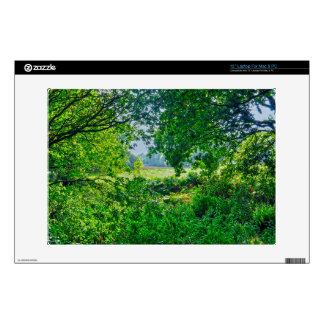 Ashley Heath Hampshire England Forest Scene Decal For Laptop