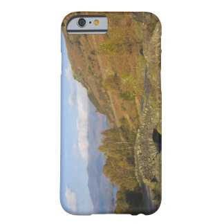 Ashness Bridge, Lake District, Cumbria, England Barely There iPhone 6 Case