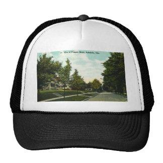 Ashtabula Ohio Prospect Street Postcard 1910s Trucker Hat