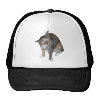Ashtees Trucker Hat