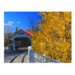 Ashuelot Covered Bridge Forsythia Postcard