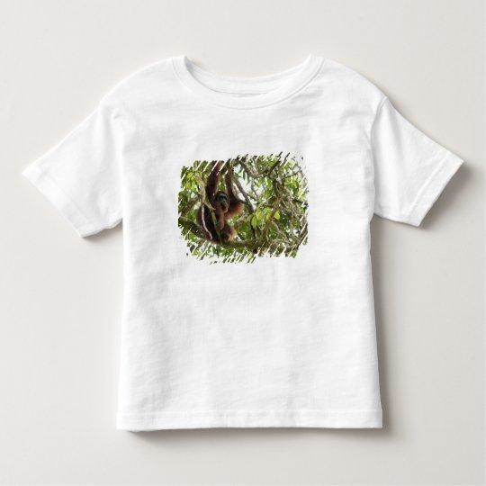 Asia, Borneo, Malaysia, Sarawak, Orangutan Toddler T-shirt