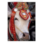 Asia, Burma (Myanmar) Shinbyu ceremony. Bull Card