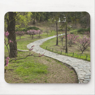 Asia, China, Beijing. Spring blossoms along Mouse Pad
