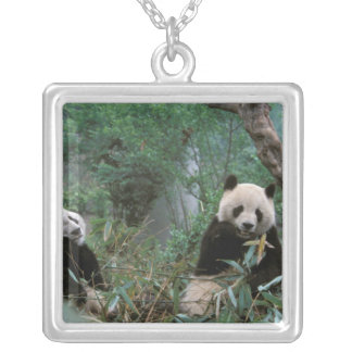 Asia, China, Chengdu. Giant Panda Sanctuary - 2 Silver Plated Necklace