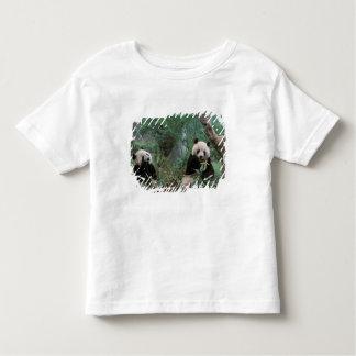 Asia, China, Chengdu. Giant Panda Sanctuary - 2 Toddler T-shirt