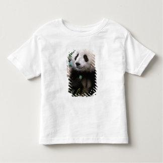Asia, China, Chengdu. Giant Panda Sanctuary - Toddler T-shirt
