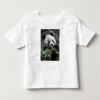 Asia, China Chongqing. Giant Panda at the Toddler T-shirt