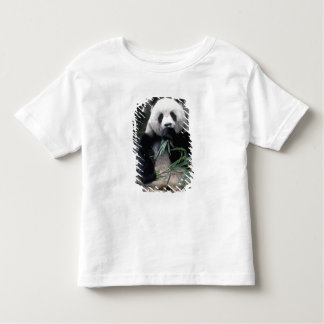 Asia, China, Chundu, Giant panda Toddler T-shirt