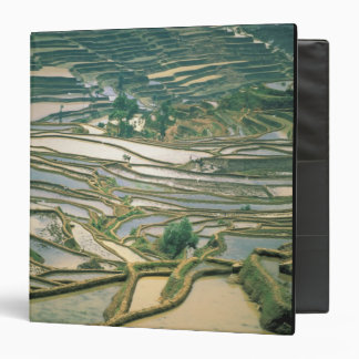 Asia, China. Flooded rice terraces near Nano Binder