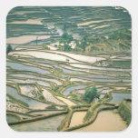 Asia, China. Flooded rice terraces near Nano Square Sticker
