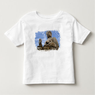 Asia, China, Hong Kong, Lantau Island, Ngong Shirt