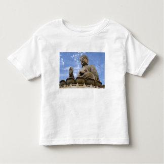 Asia, China, Hong Kong, Lantau Island, Ngong T-shirt