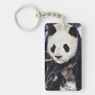 Asia, China, Sichuan Province. Giant Panda in 2 Double-Sided Rectangular Acrylic Keychain